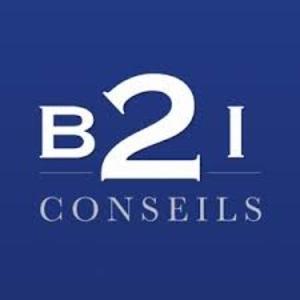 B2I Conseils