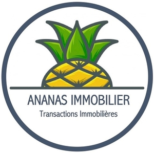 Ananas Immobilier