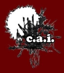 CABINET COTE D'AZUR IMMOBILIERE (C.A.I)