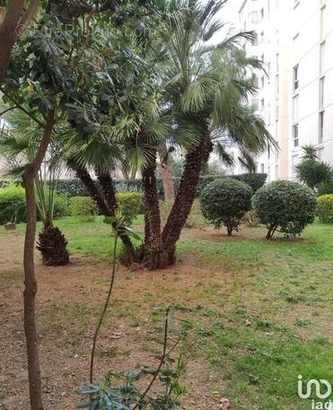 Photo 1 - Appartement à TOULON