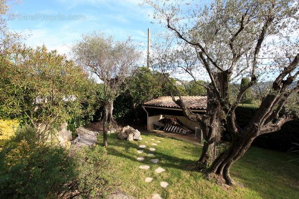 Jardin - Maison à MOUGINS